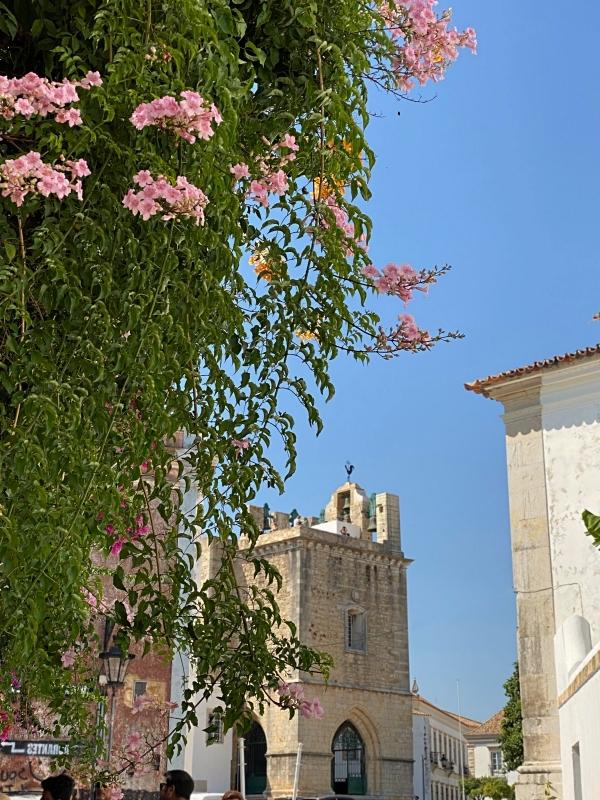 Faro Gebäude und Blumenranken