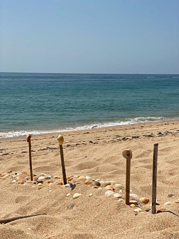 Meer in Faro Desert Island